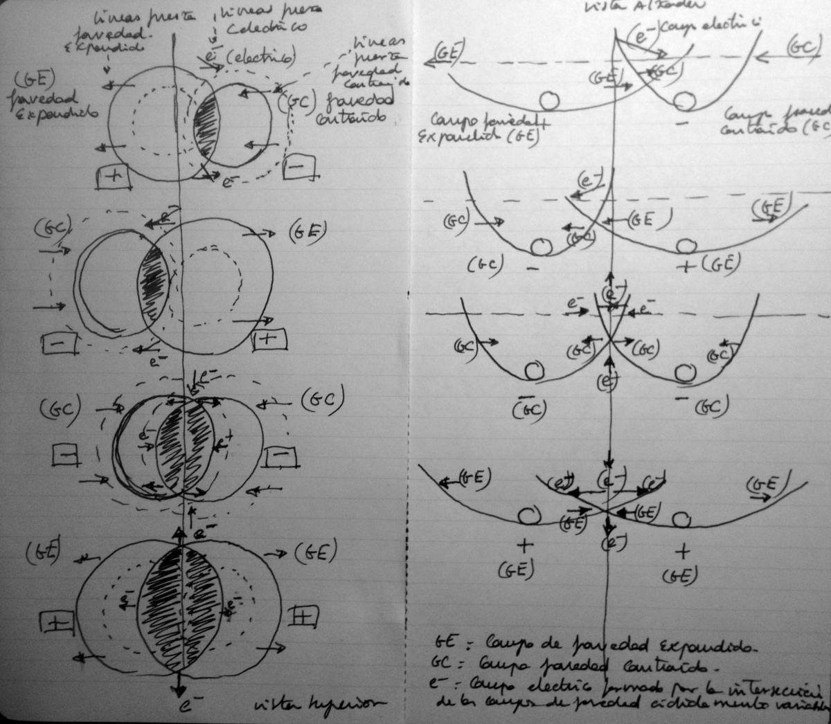 Electro_Gravitational_Forces_And_Interactions